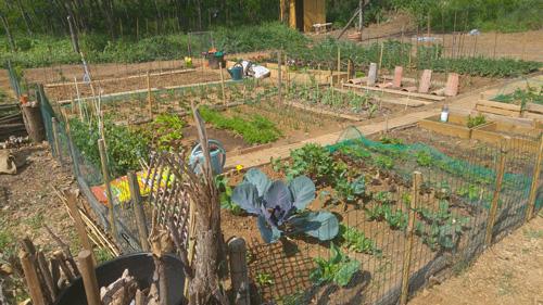 Jardins-de-jeannot
